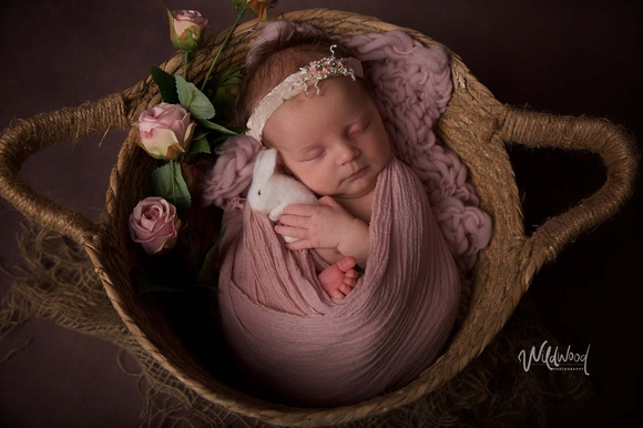 Ballarat Newborn and Maternity photography, Wildwood Photography